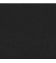 Brave Black [77M]
