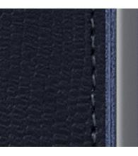 Rango-Blue-Titanium