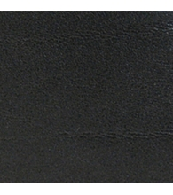 Schwarz [8]