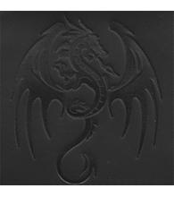 Dragon [22]