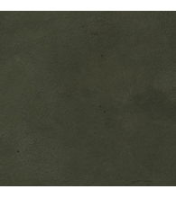 Oliv [4]