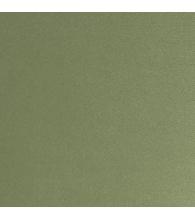 Grün [420]