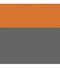 Graphite/Orange [1374]