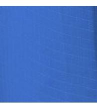 Blue [300]