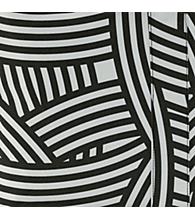 Zebra [1032]