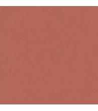 Rust [49-5519]